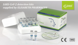 EliGene - SARS-CoV2 diagnostic kits
